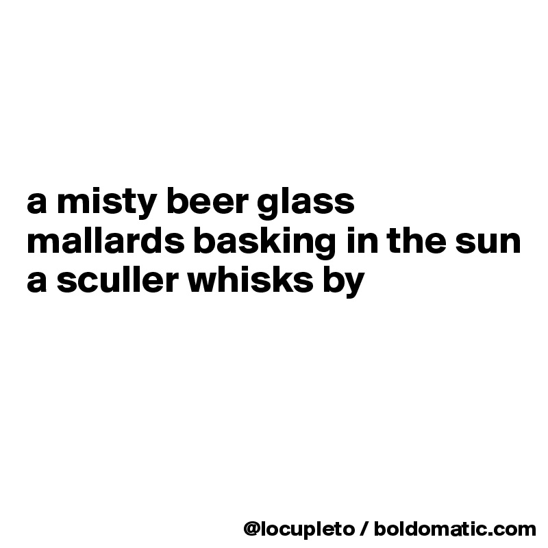 a misty beer glass mallards basking in the sun a sculler whisks by