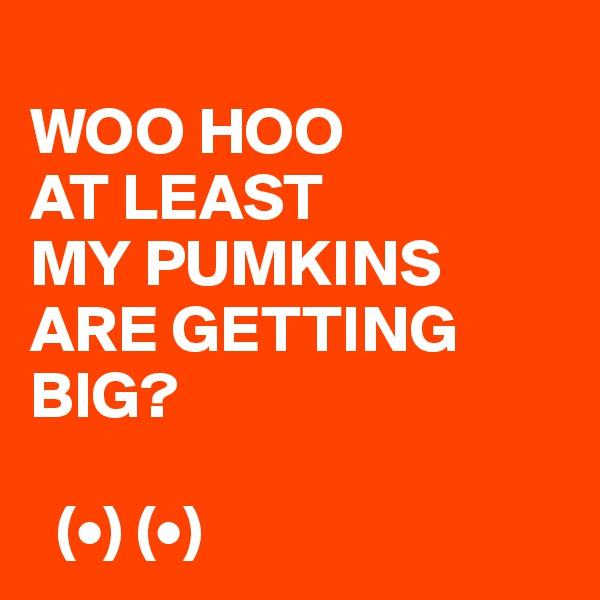 WOO HOO AT LEAST  MY PUMKINS ARE GETTING BIG?    (•) (•)