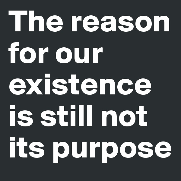 The reason for our existence is still not its purpose