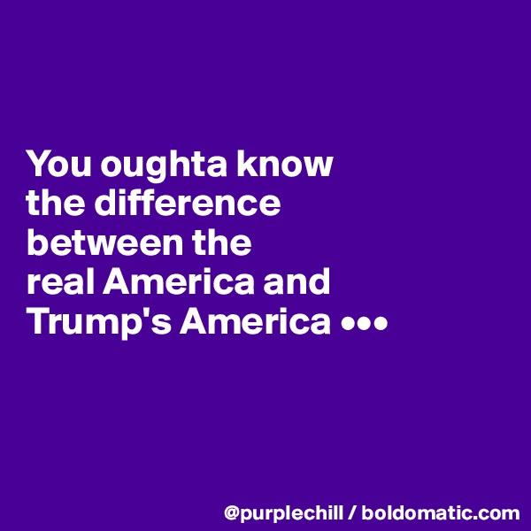You oughta know  the difference  between the  real America and  Trump's America •••