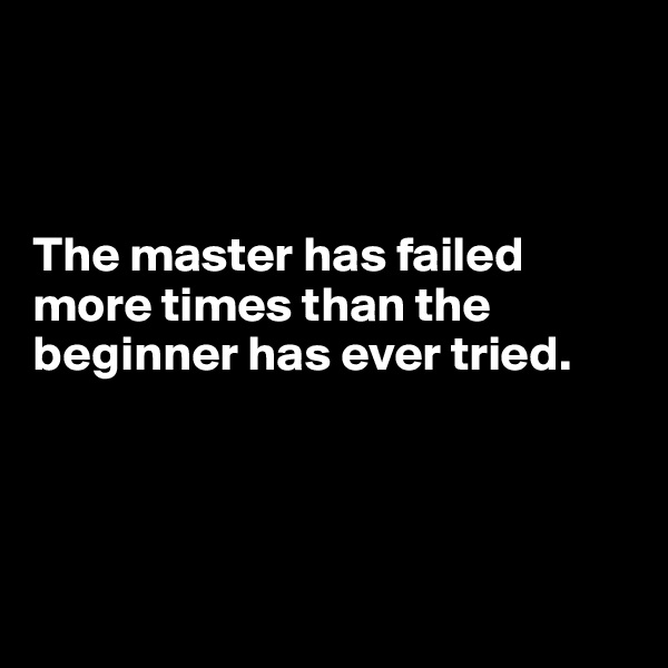 The master has failed more times than the beginner has ever tried.