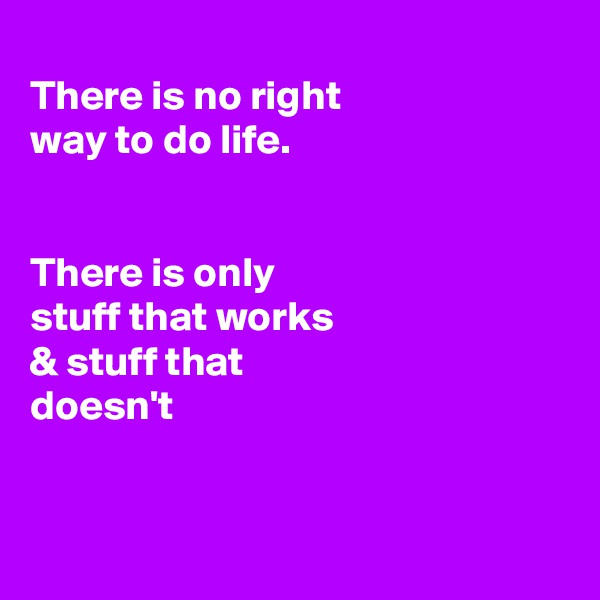 There is no right way to do life.   There is only stuff that works  & stuff that doesn't