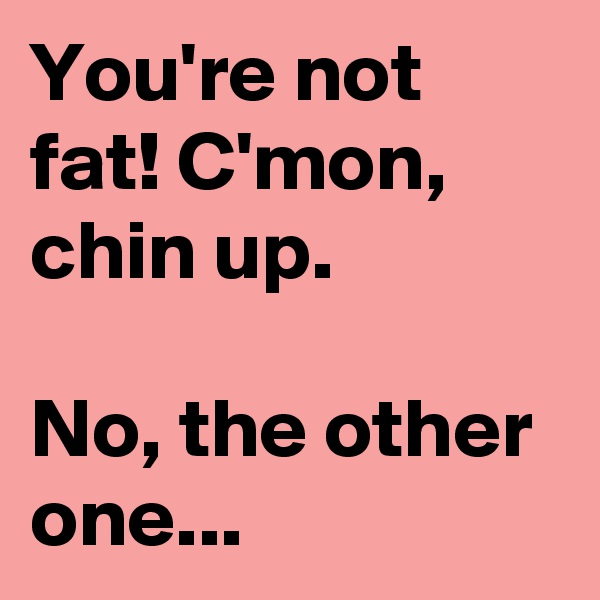 You're not fat! C'mon, chin up.  No, the other one...