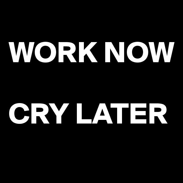 WORK NOW  CRY LATER