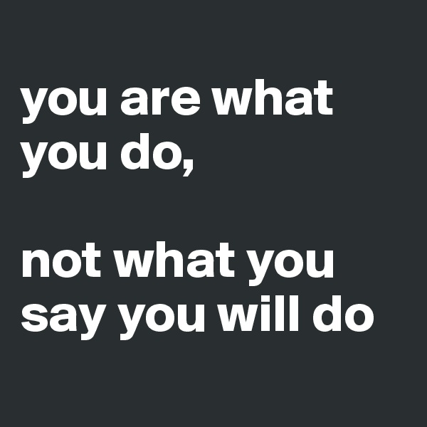 you are what you do,  not what you say you will do