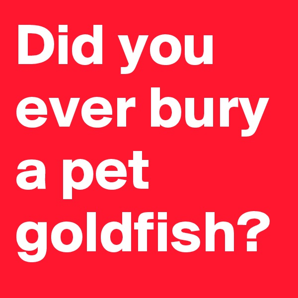 Did you ever bury a pet goldfish?