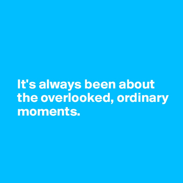 It's always been about     the overlooked, ordinary     moments.