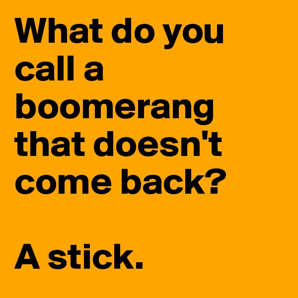 What do you call a boomerang that doesn't come back?   A stick.