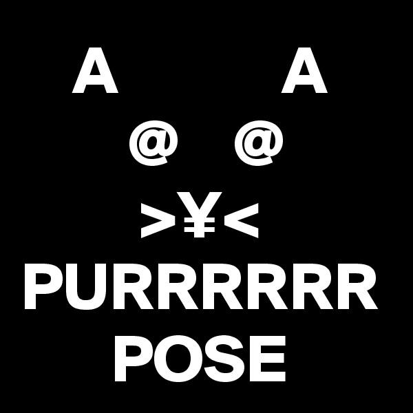 A            A  @    @ >¥< PURRRRRR POSE