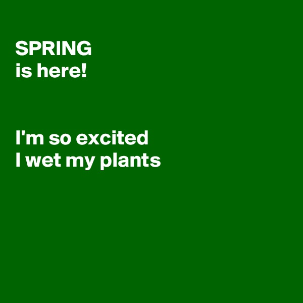 SPRING is here!   I'm so excited I wet my plants