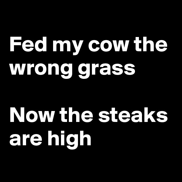 Fed my cow the wrong grass  Now the steaks are high