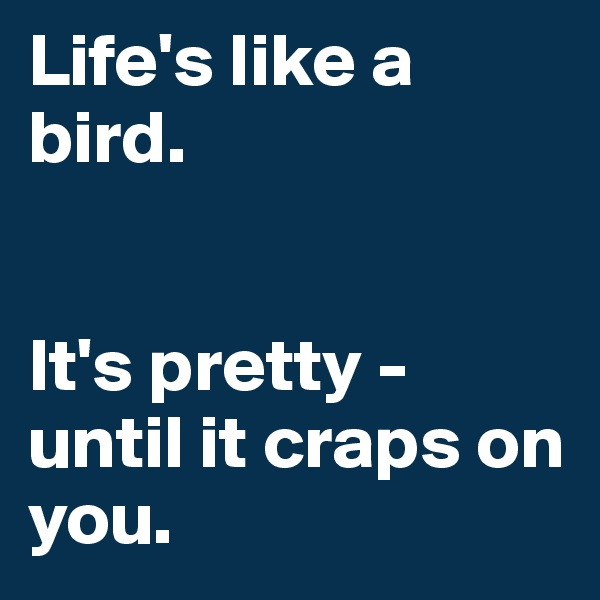 Life's like a bird.    It's pretty - until it craps on you.