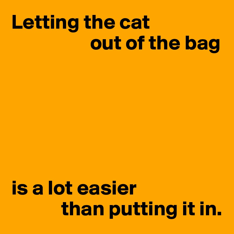 Letting the cat                    out of the bag       is a lot easier             than putting it in.