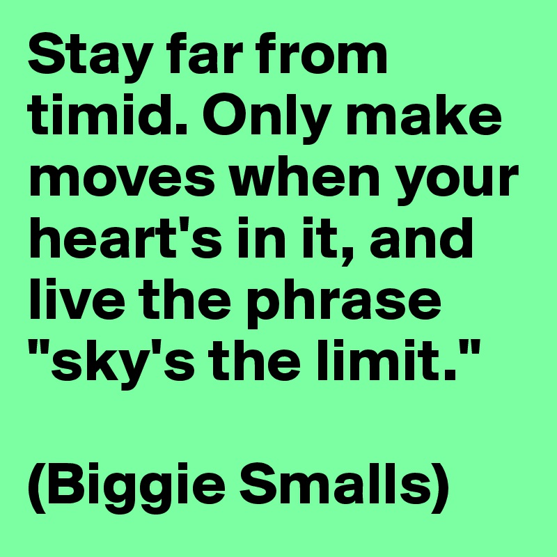 """Stay far from timid. Only make moves when your heart's in it, and live the phrase """"sky's the limit.""""  (Biggie Smalls)"""