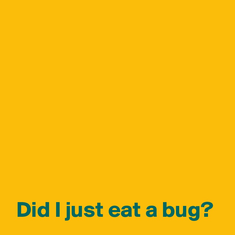 Did I just eat a bug?