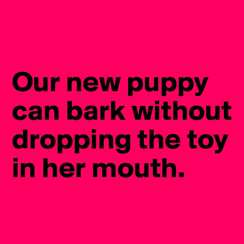 Our new puppy can bark without dropping the toy in her mouth.