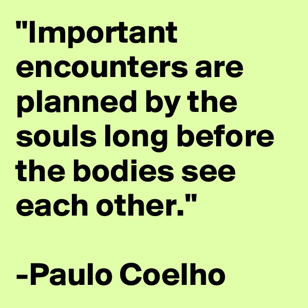 """""""Important encounters are planned by the souls long before the bodies see each other.""""  -Paulo Coelho"""