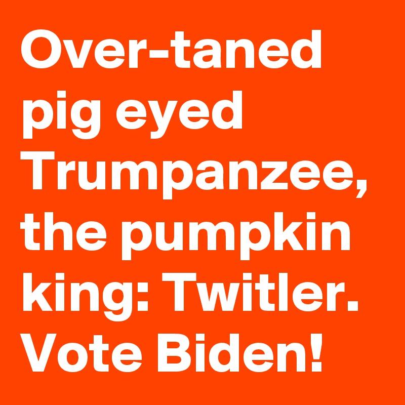 Over-taned pig eyed Trumpanzee, the pumpkin king: Twitler. Vote Biden!