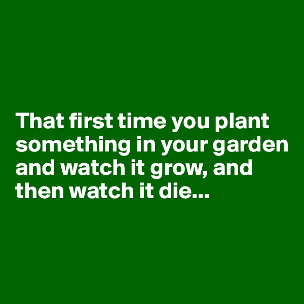 That first time you plant something in your garden and watch it grow, and then watch it die...