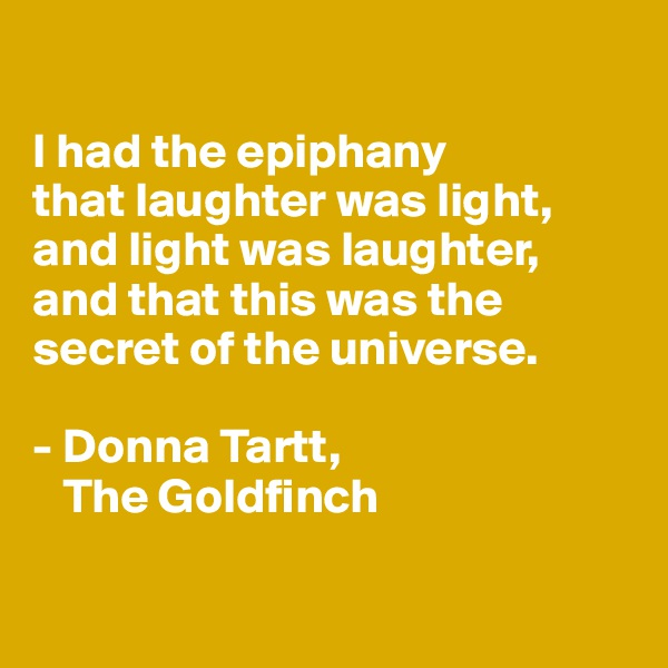 I had the epiphany  that laughter was light, and light was laughter,  and that this was the secret of the universe.  - Donna Tartt,     The Goldfinch