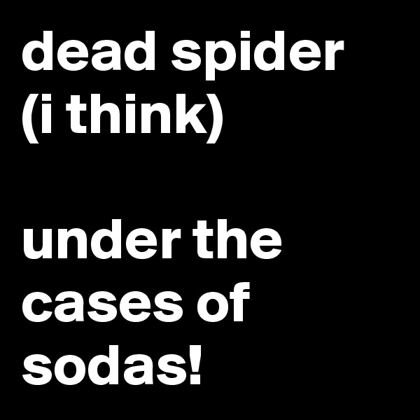 dead spider (i think)  under the cases of sodas!