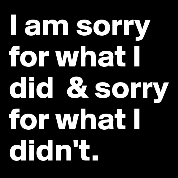 I am sorry for what I did  & sorry for what I didn't.