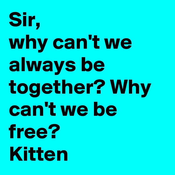 Sir, why can't we always be together? Why can't we be free? Kitten