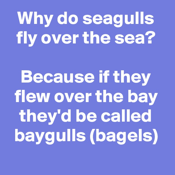 Why do seagulls fly over the sea?  Because if they flew over the bay they'd be called baygulls (bagels)