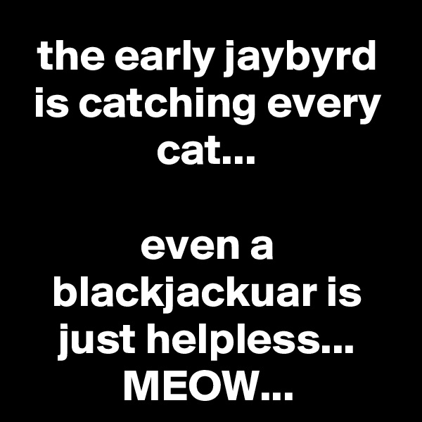 the early jaybyrd is catching every cat...  even a blackjackuar is just helpless... MEOW...