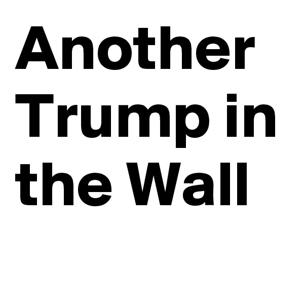 Another Trump in the Wall