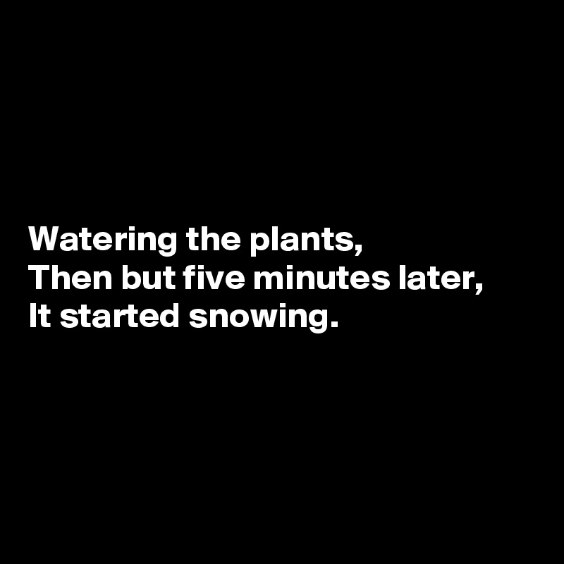 Watering the plants, Then but five minutes later, It started snowing.