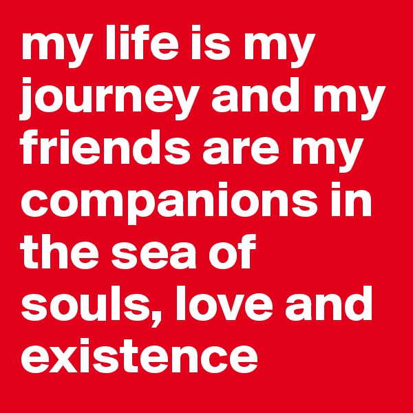my life is my journey and my friends are my companions in the sea of souls, love and existence
