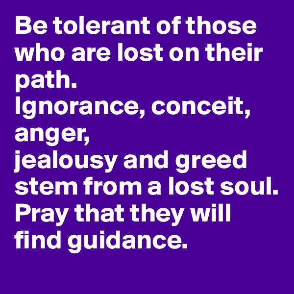 Be tolerant of those who are lost on their path. Ignorance, conceit, anger, jealousy and greed stem from a lost soul. Pray that they will find guidance.