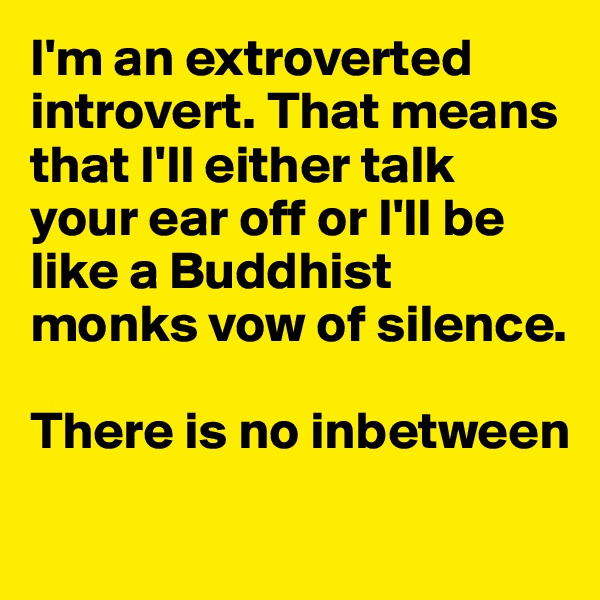 I'm an extroverted introvert. That means that I'll either talk your ear off or I'll be like a Buddhist monks vow of silence.  There is no inbetween
