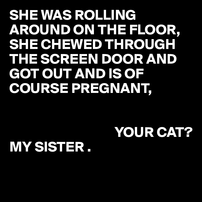 SHE WAS ROLLING AROUND ON THE FLOOR, SHE CHEWED THROUGH THE SCREEN DOOR AND GOT OUT AND IS OF COURSE PREGNANT,                                             YOUR CAT? MY SISTER .