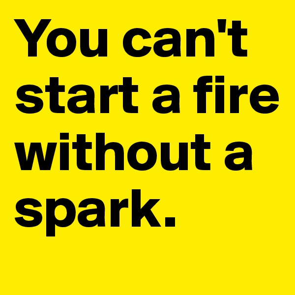 You can't start a fire without a spark.
