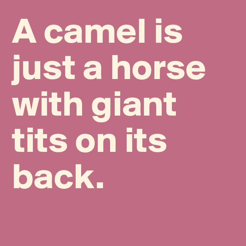 A camel is just a horse with giant tits on its back.