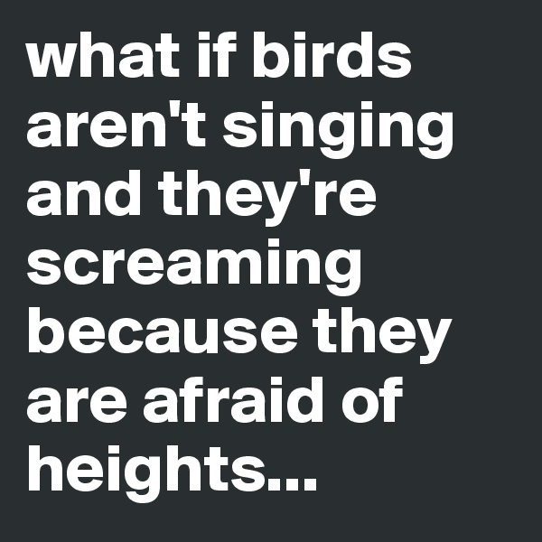what if birds aren't singing and they're screaming because they are afraid of heights...