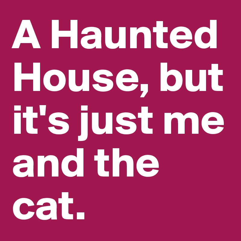 A Haunted House, but it's just me and the cat.