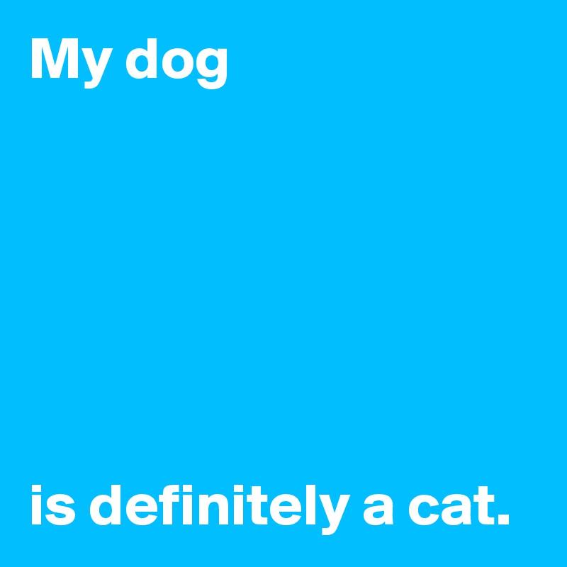 My dog       is definitely a cat.
