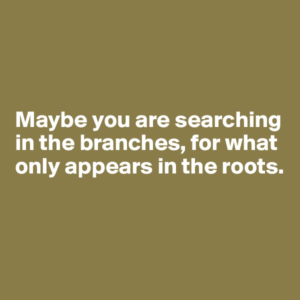 Maybe you are searching in the branches, for what only appears in the roots.