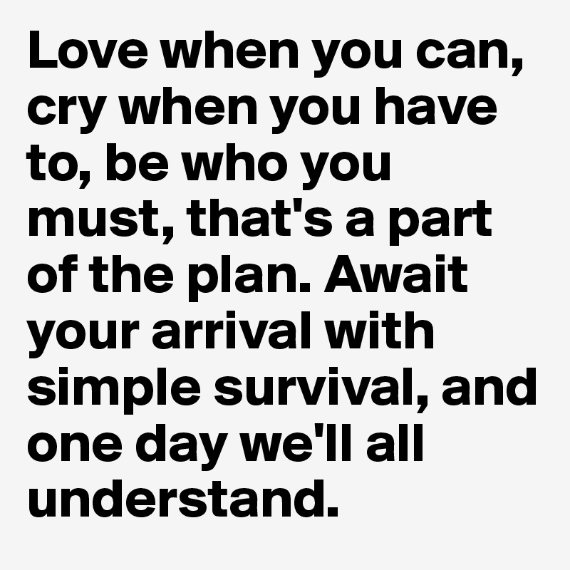 Love when you can, cry when you have to, be who you must, that's a part of the plan. Await your arrival with simple survival, and one day we'll all understand.
