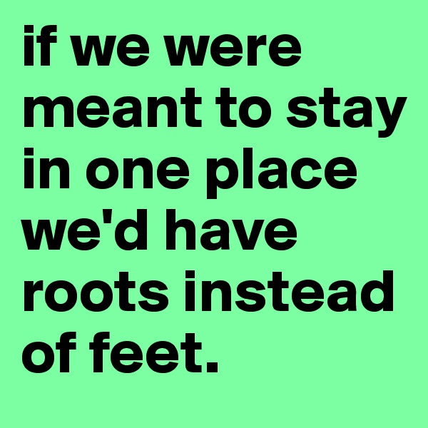 if we were meant to stay in one place we'd have roots instead of feet.