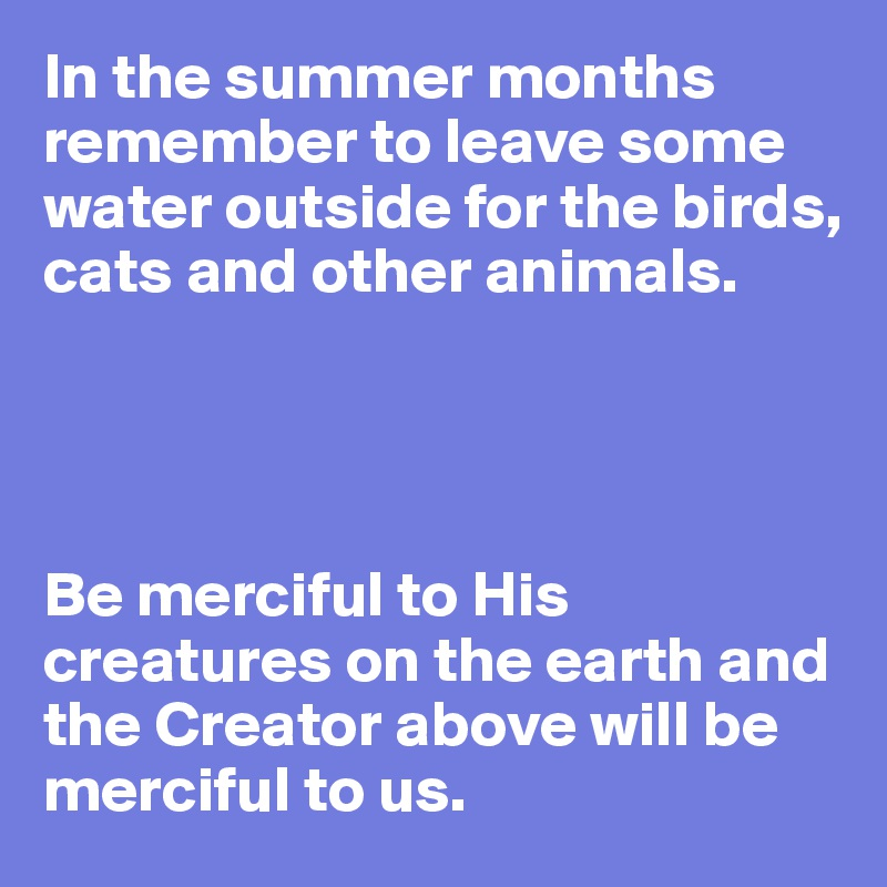 In the summer months remember to leave some water outside for the birds, cats and other animals.     Be merciful to His creatures on the earth and the Creator above will be merciful to us.