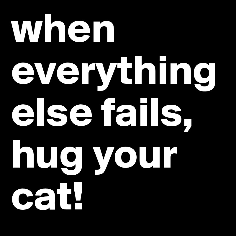 when everything else fails, hug your cat!