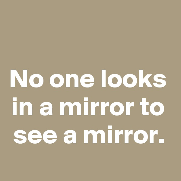 No one looks in a mirror to see a mirror.