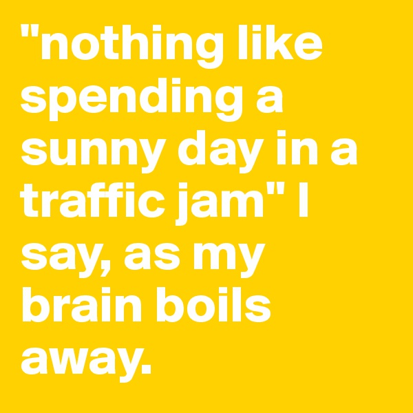 """""""nothing like spending a sunny day in a traffic jam"""" I say, as my brain boils away."""