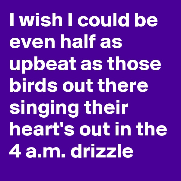 I wish I could be even half as upbeat as those birds out there singing their heart's out in the 4 a.m. drizzle