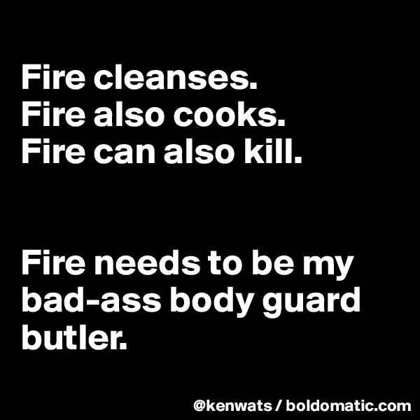 Fire cleanses.  Fire also cooks.  Fire can also kill.    Fire needs to be my bad-ass body guard butler.