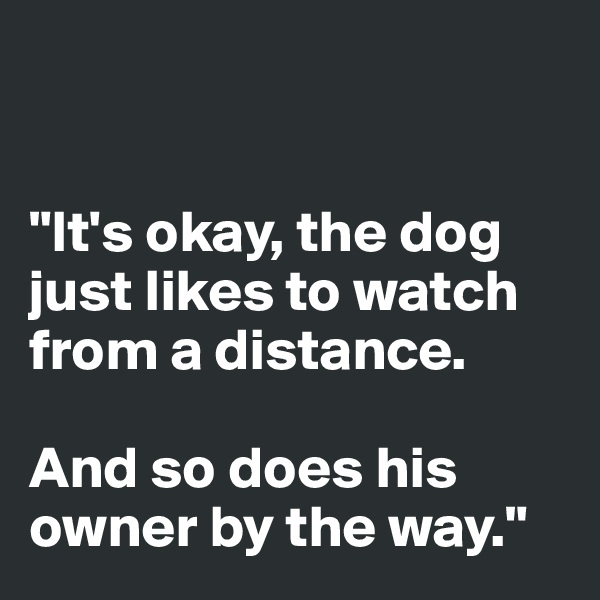 """""""It's okay, the dog just likes to watch  from a distance.  And so does his owner by the way."""""""